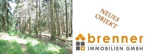 Neu im Verkauf: Waldflächen Gemarkung Fichtenau
