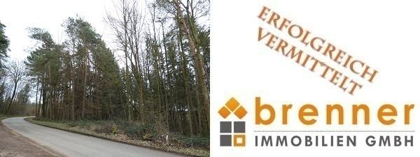 Erfolgreich vermittelt: Waldfläche zwischen Feuchtwangen und Dentlein am Forst